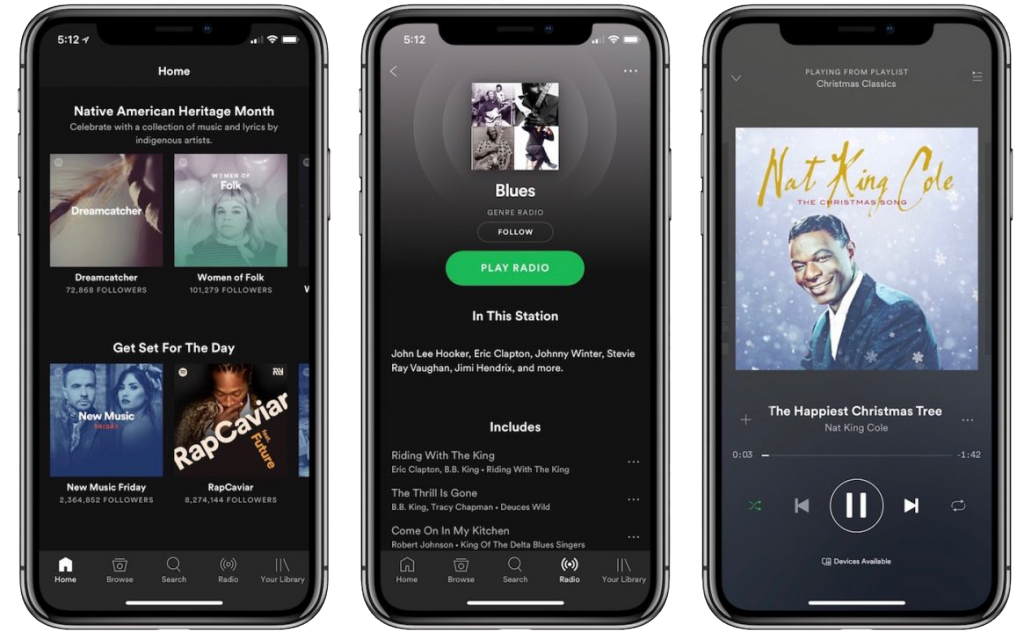 Spotify-iPhoneX-applications